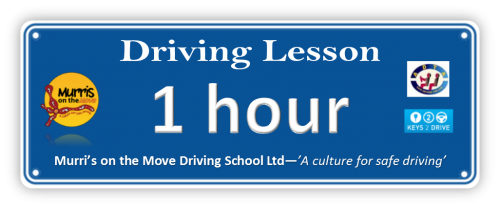 Driving Lesson 1 hour with our qualified driving instructors